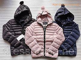 ️Женские демисезонные куртки  Nature s - xxl р.р.