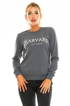 Свитшот HARVARD темно-серый, фото 2