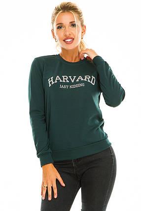Свитшот HARVARD темно-зеленый, фото 2