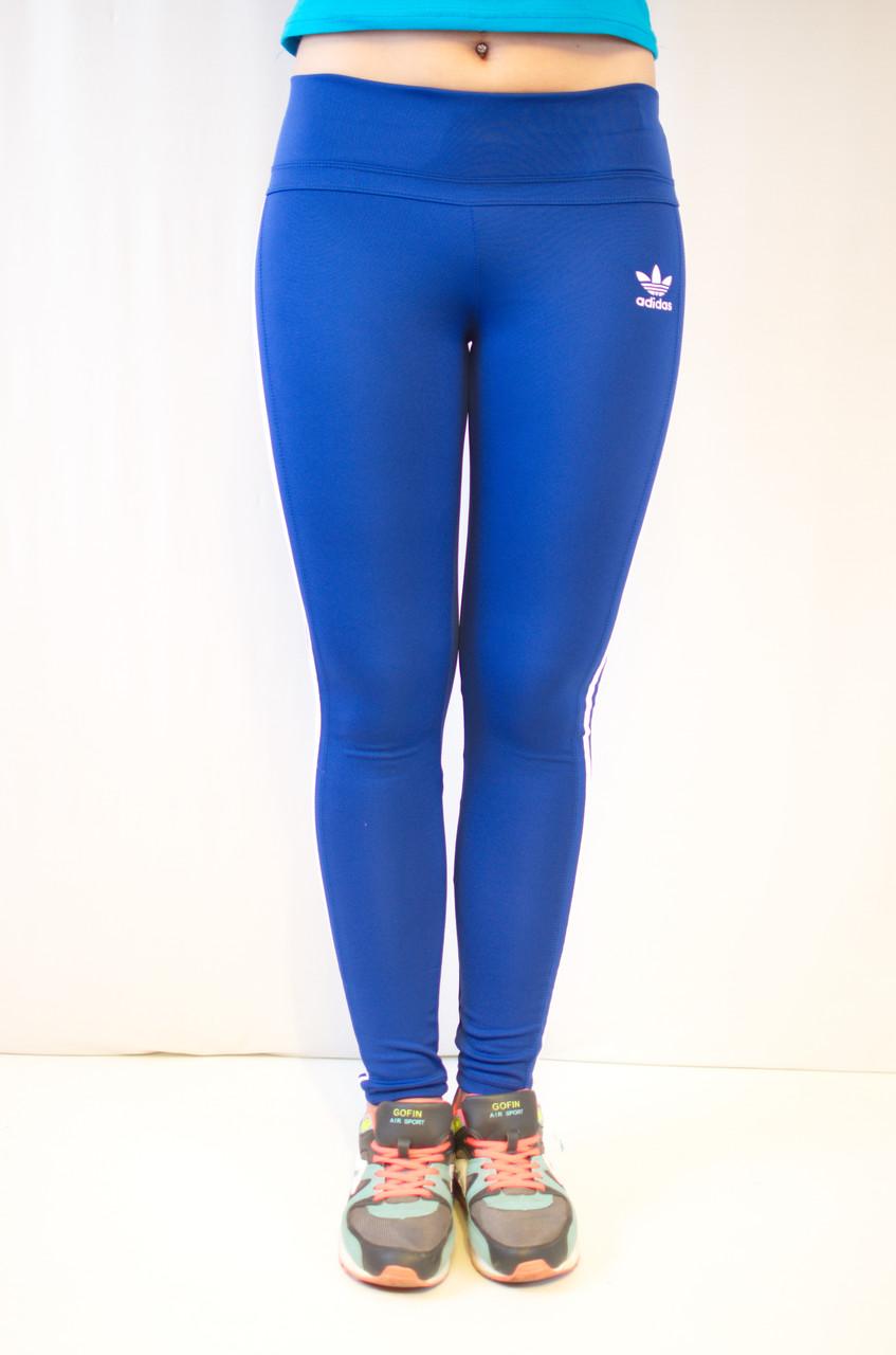 Спортивные синие лосины Adidas из ластика 42-50