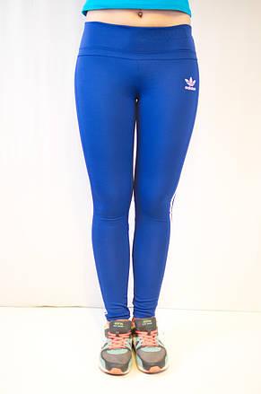 Спортивные синие лосины Adidas из ластика 42-50, фото 2