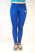 Спортивные синие лосины Adidas из ластика