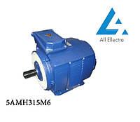 Электродвигатель 5АМН315М6 160 кВт/1000 об/мин. 380 В
