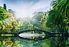 Фотообои: Мост в лучах солнца, 366х254 см, 8 частей