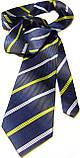Краватка чоловічий Firsile, фото 4