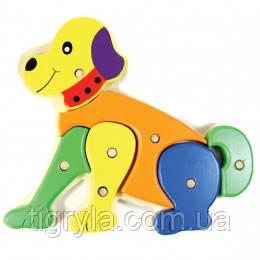 Вкладыши Монтессори - деревянные на фиксаторе собачка, фото 2