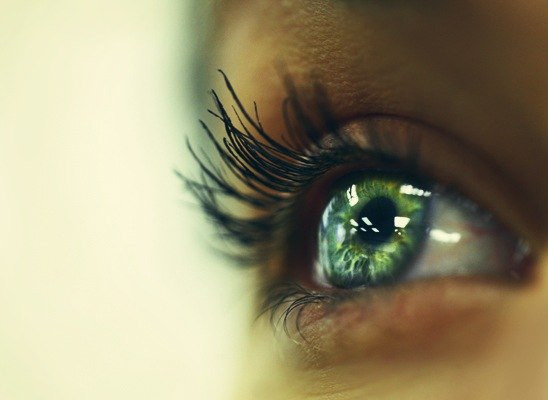 green-eye-linza.org