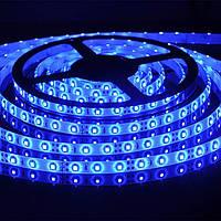 Светодиодная лента SMD 3528 5м влагозащищенная 300 диодов Blue (3_9156), фото 1