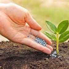 Удобрения, стимуляторы и регуляторы роста.