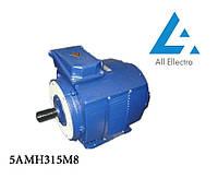 Электродвигатель 5АН315М8 132 кВт/750 об/мин. 380 В