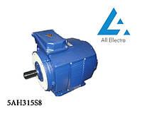 Электродвигатель 5АН315S8 110 кВт/750 об/мин. 380 В