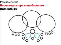 Ремкомплект насоса-дозатора моноблочного НДМ-125-16 Дон