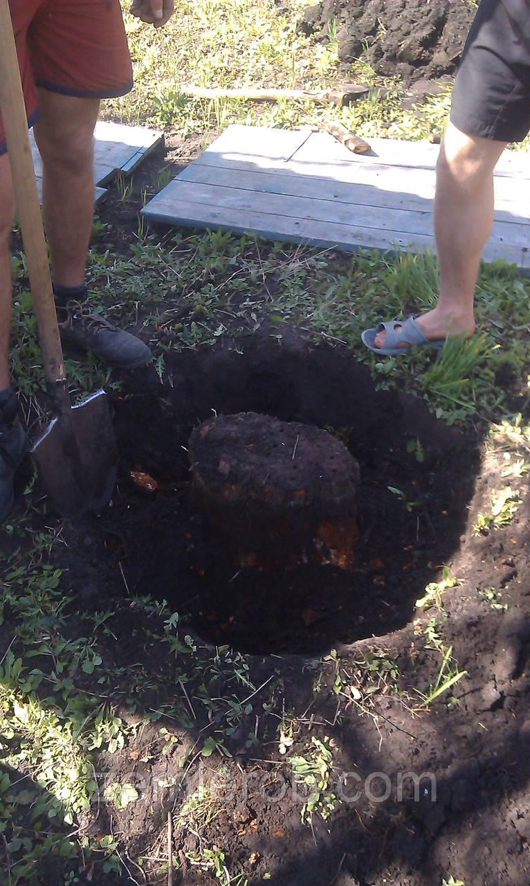Удалить корень дерева в Харькове и области