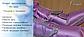 Аппарат прессотерапии PR 2000, фото 7