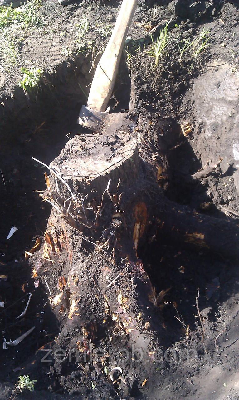 Выкорчевать дерево вручную в Харькове и области