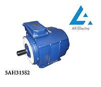 Электродвигатель 5АН315S2 200 кВт/3000 об/мин. 380 В