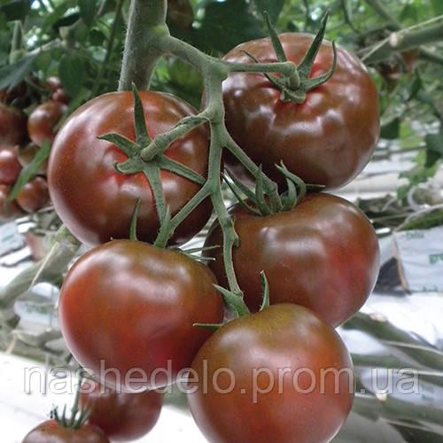 Семена томата Сашер F1 100 сем. Yuksel Tohum