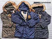 Мужская утепленная куртка оптом, Nature, S-XXL,  № RQG-5201