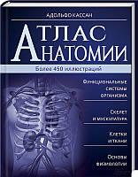 Атлас анатомии. Автор: А. Кассан