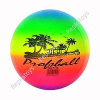"""Мяч Пальма размер 8.5"""" вес 250 г   MS 0116"""