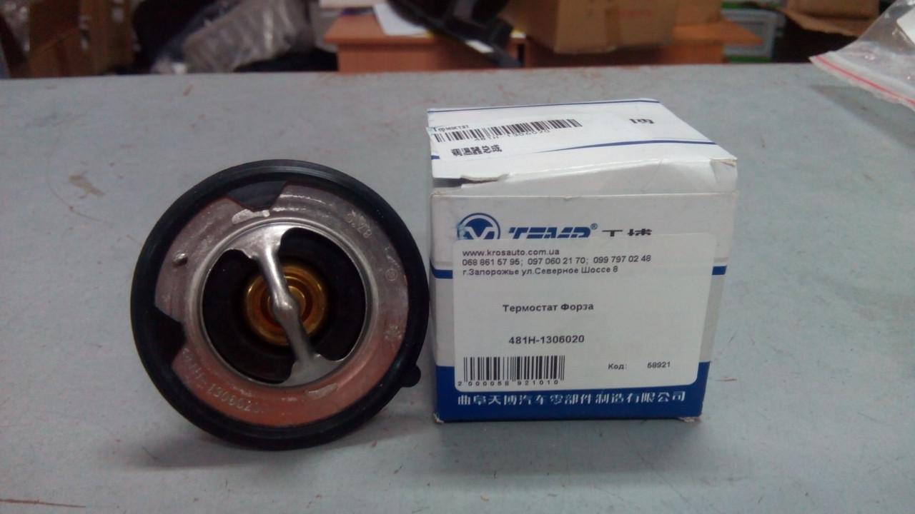 Термостат Forza 481H-1306020