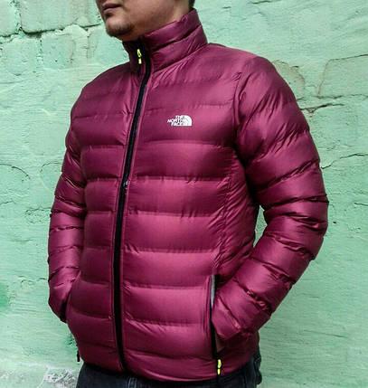 Мужская Куртка The North Face, фото 2