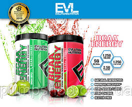 БЦАА Evlution Nutrition Energy BCAA 65 порц. (уцінка), фото 3