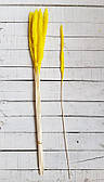 Сухоцвет Вейник   ,   желтый              15  шт