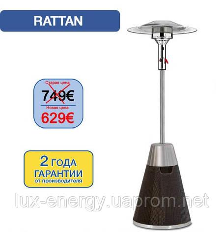 Вуличний інфрачервоний газовий обігрівач Enders Rattan, фото 2