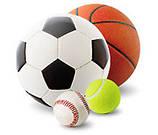 Игровые виды спорта