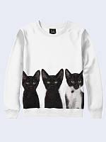 Свитшот Три котика