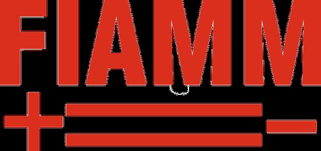 Как определить дату производства FIAMM Titanium Pro?