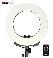 """Кольцевой LED осветитель TRIOPO (14"""") с димером и дистанционным пультом - для портретной, бьюти и селфи съемки"""