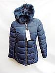 Новый товар - женские зимние куртки оптом