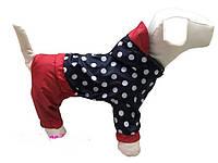 """Дождевик комбинезон для собак """"Горох"""", размер 4."""