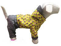 "Дождевик комбинезон для собак ""Арбузик"", размер 6"