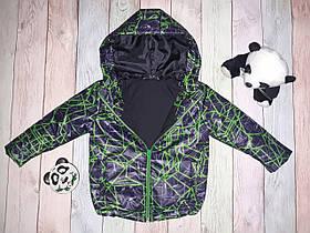 Куртка дитяча DD2004