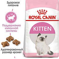 Royal Canin Kitten 10кг - корм для котят от 4 до 12 месяцев, фото 1
