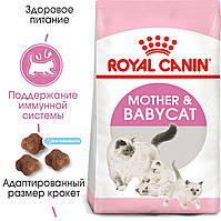 Royal Canin Mother and Babycat 4кг - корм для кошенят до 4 місяців, вагітних і годуючих кішок