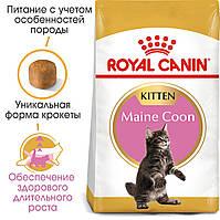 Royal Canin Maine Coon Kitten 2кг - корм для кішок породи мейн кун