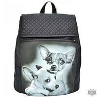 Женский рюкзак с принтом EPISODE FRIENDS E16S083.21
