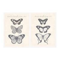 """ИКЕА """"ПЬЕТТЕРИД"""" Картина, бабочки, 2шт."""