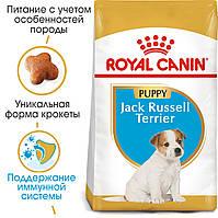 Royal Canin Jack-Russell Puppy 1,5 кг+3 пауча для цуценят породи джек-рассел-тер'єр