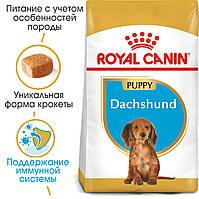 Royal Canin Dachshund Puppy 1,5 кг - корм для цуценят породи такса