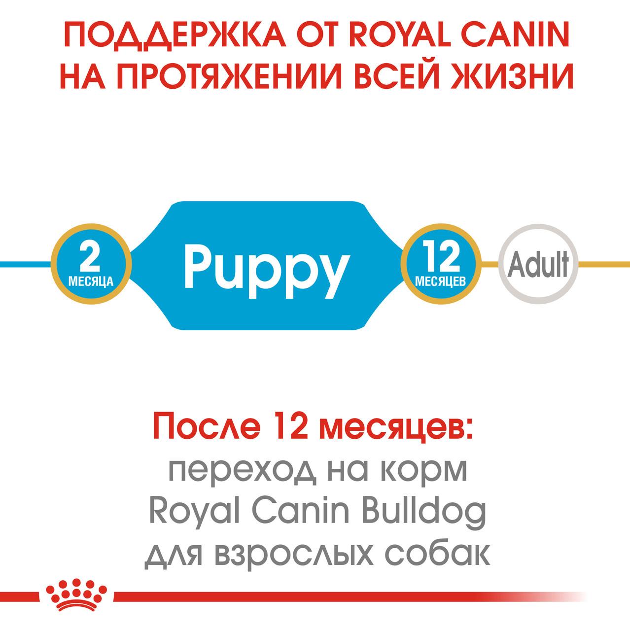 Корм royal canin 20 кг