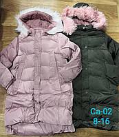 Куртки утепленные для девочек оптом, Sincere, 8-16 лет,  № Ca-02