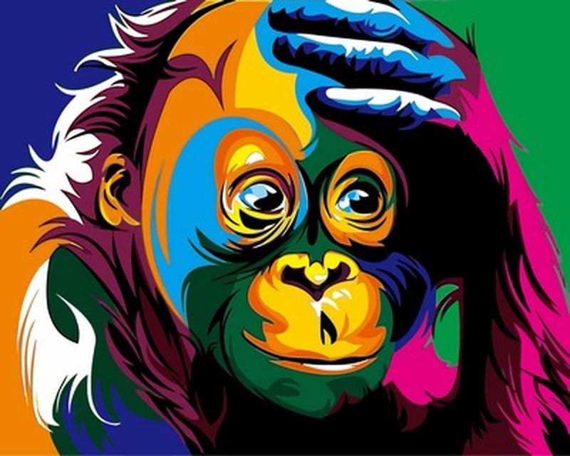 Набор для рисования 40×50 см. Радужная обезьяна Художник Ваю Ромдони