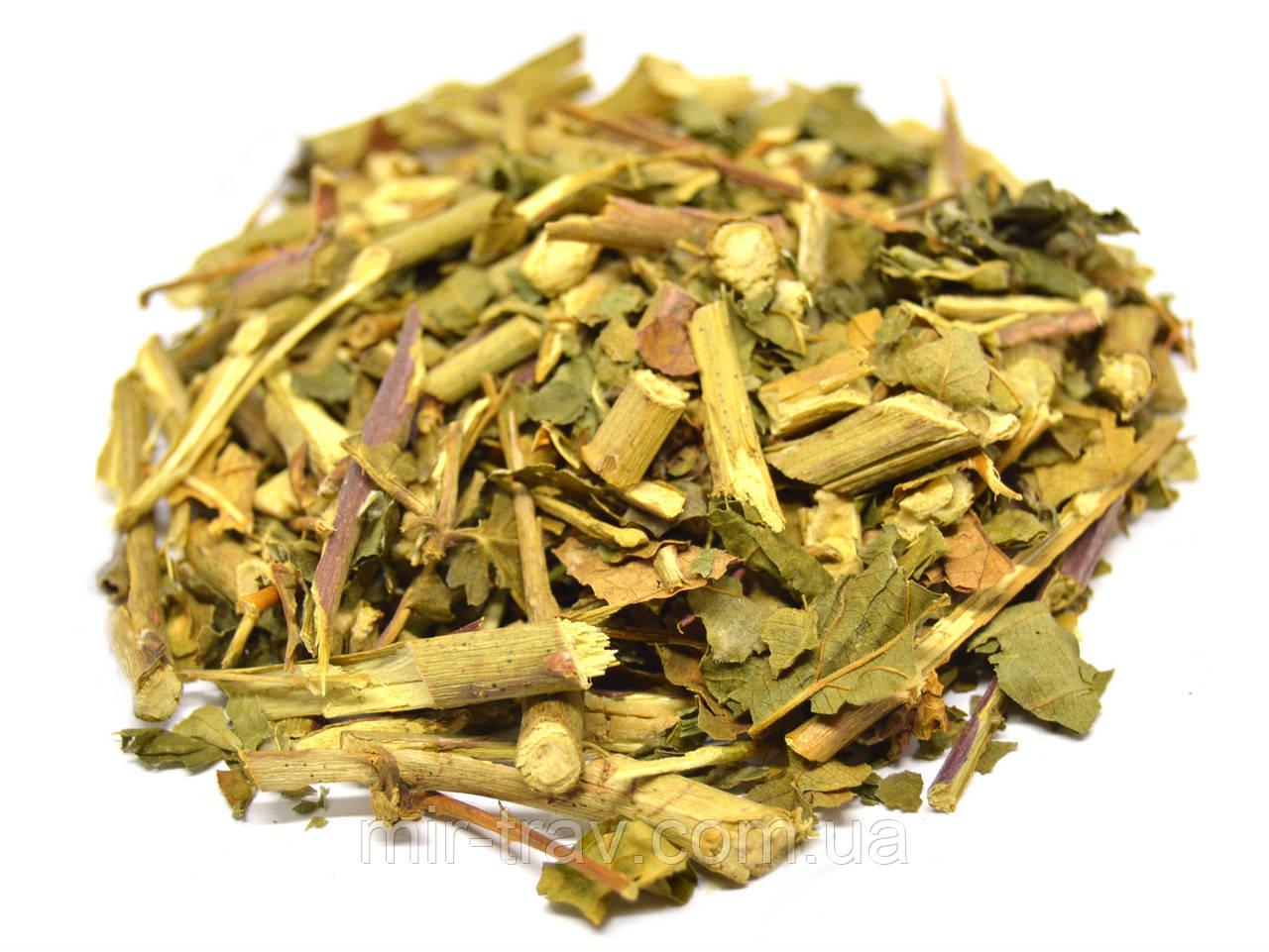 Ежевика листья (трава)