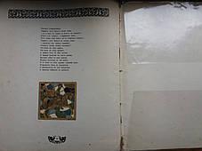 Книга Былины  Вольга  с рисунками И.Билибина 1903 год, фото 3