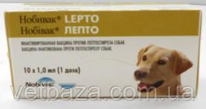 Вакцина Нобивак Лепто (Nobivac Lepto) против лептоспироза собак, инактивированная - 1 флакон/доза (1